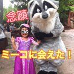 【ディズニーランド】念願のミーコに会えた!!!※追記有2020/2/19