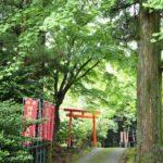 「絶対行ってほしい!!」伊勢神宮の鬼門を守る、朝熊岳金剛證寺と、家族を救った「おちんこ地蔵」