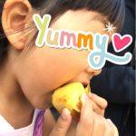 芋系の食べ物の記録~おいもやさん興伸~